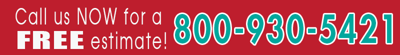 800 number banner-800x110