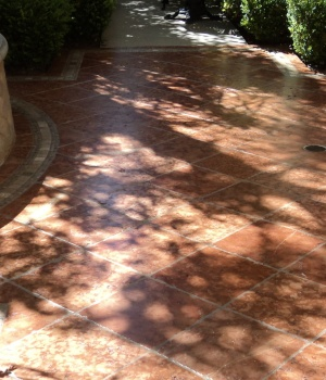 Paver-After-Cropped-02